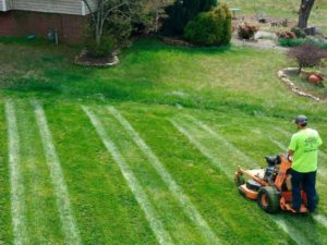 Lawn Mowing Patterns