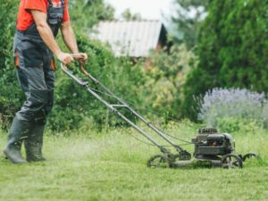 Mowing Dewy Grass