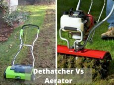 Dethatcher Vs Aerator