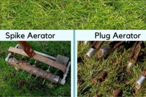 Spikes Vs. Plug Spoons for Lawn Aeration