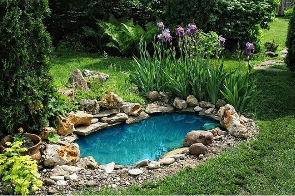 How Much Does a Backyard Pond Cost